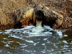 """以污染物为""""食"""" 微生物带来废水处理新思路"""