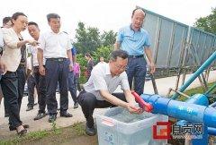 自贡市领导调研督导生态环保督察整改工作