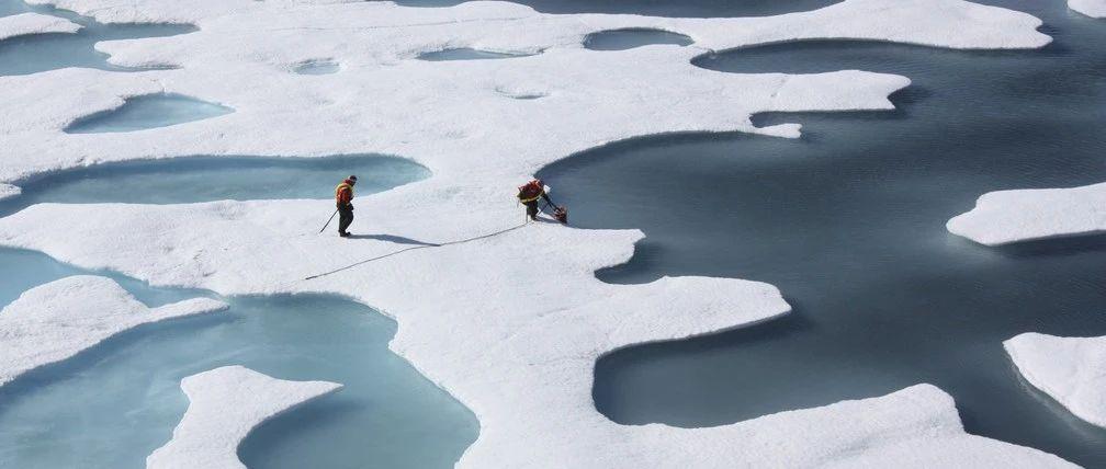此刻发生在北极的四件怪事