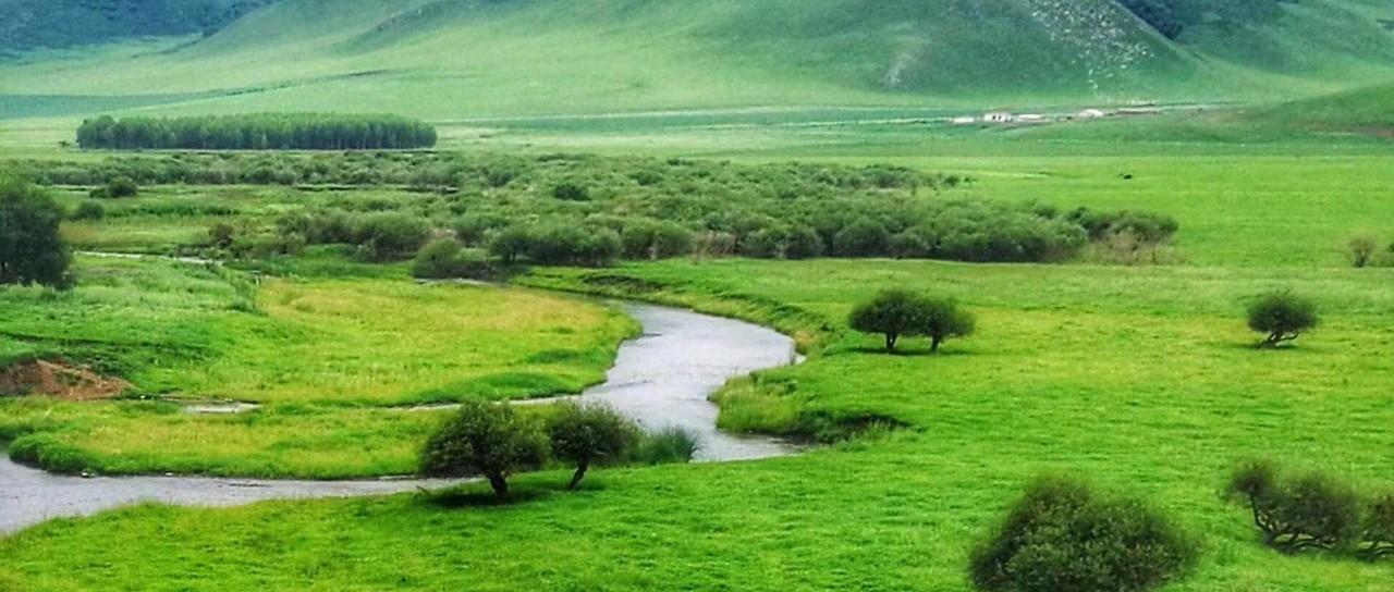 我国将推动建立草原类型国家公园 加强