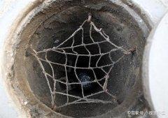 别让管网建设维护成乡镇污水处理项目之殇