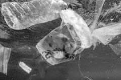 缺乏共识:海洋垃圾山成全球难题