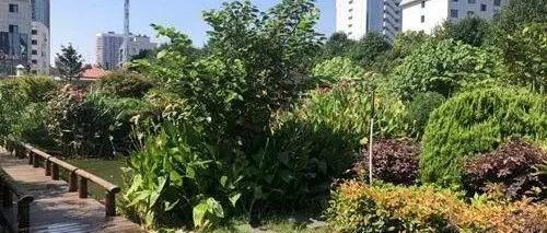 湖南生态环保建成三大监控体系