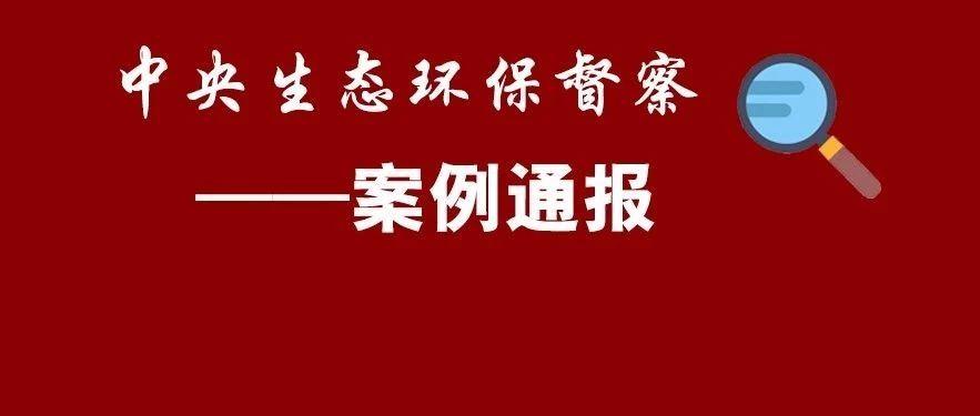 南澄迈县肆意围填海、破坏红树林
