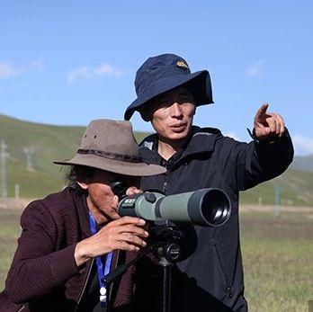 中国首个黑颈鹤繁殖保护地:环境好坏