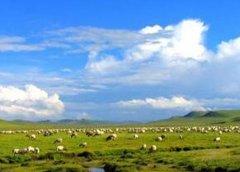 我国畜牧业非CO2温室气体排放强度持续下降