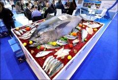 酷鱼滥捕、气候变化导致海洋鱼类汞污染加剧
