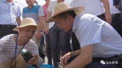 广东省领导调研练江治污和环境基础设施建设情况