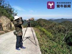 南京市民15年拍出紫金山鸟类纪录片,画