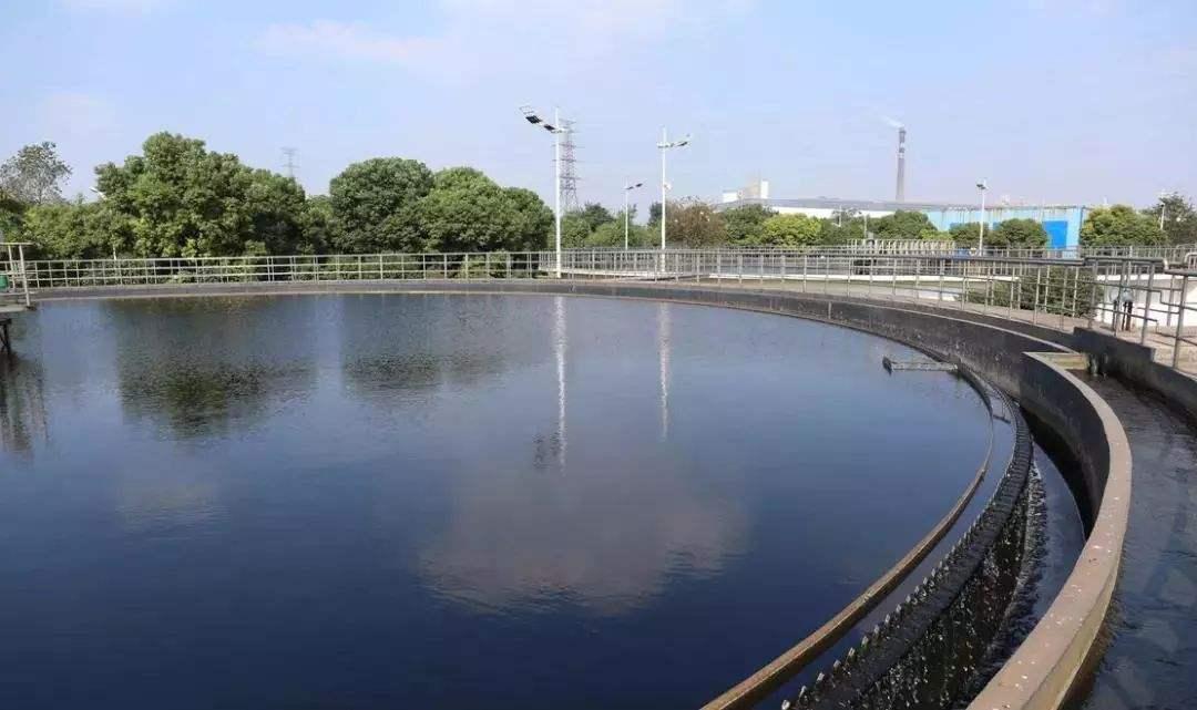 污水处理中的碳源如何选择?