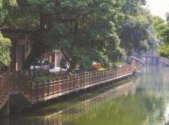 东莞市河长办通报今年黑臭水体治理进