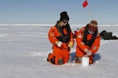 从北极到阿尔卑斯 科学家证实:微塑料粒已