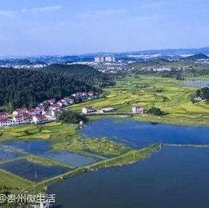 贵州省金融学会调研组点赞贵安新区绿