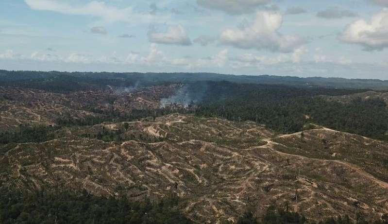 马来西亚砂拉越原住民为保森林提出诉