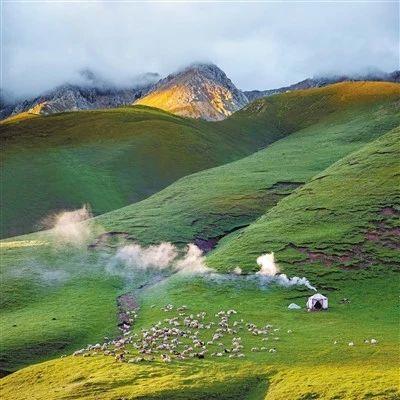祁连山国家公园青海片区分布较高密度的荒漠