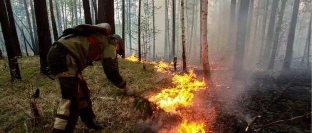 不仅仅是亚马逊雨林,北极也在燃烧