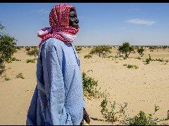 防治荒漠化公约缔约方会议:聚焦解决土地退化与移徙的