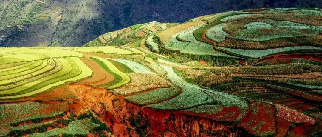环境保护与经济发展何以双赢?云南给出这样的答案