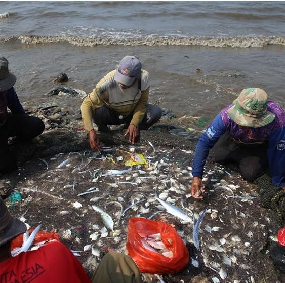 """印尼海滩垃圾成山 渔民却在塑料垃圾中""""捞鱼"""""""