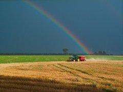 磷肥即将消耗殆尽 威胁世界粮食供给