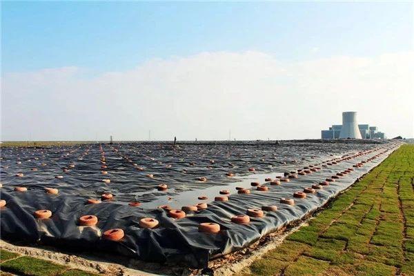 全国人大代表呼吁建立长江流域生活垃