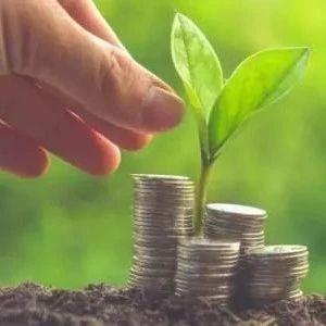 史建平:中国绿色金融发展的四个关键问题
