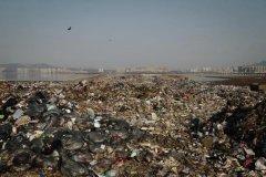 加强外卖垃圾循环处理 建设绿色无废城市
