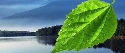 中国人民银行发布《中国绿色金融发展报告(