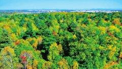 长白山保护开发区关于集中开展生态环
