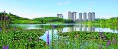守护碧水蓝天 共筑美丽家园――贵阳市
