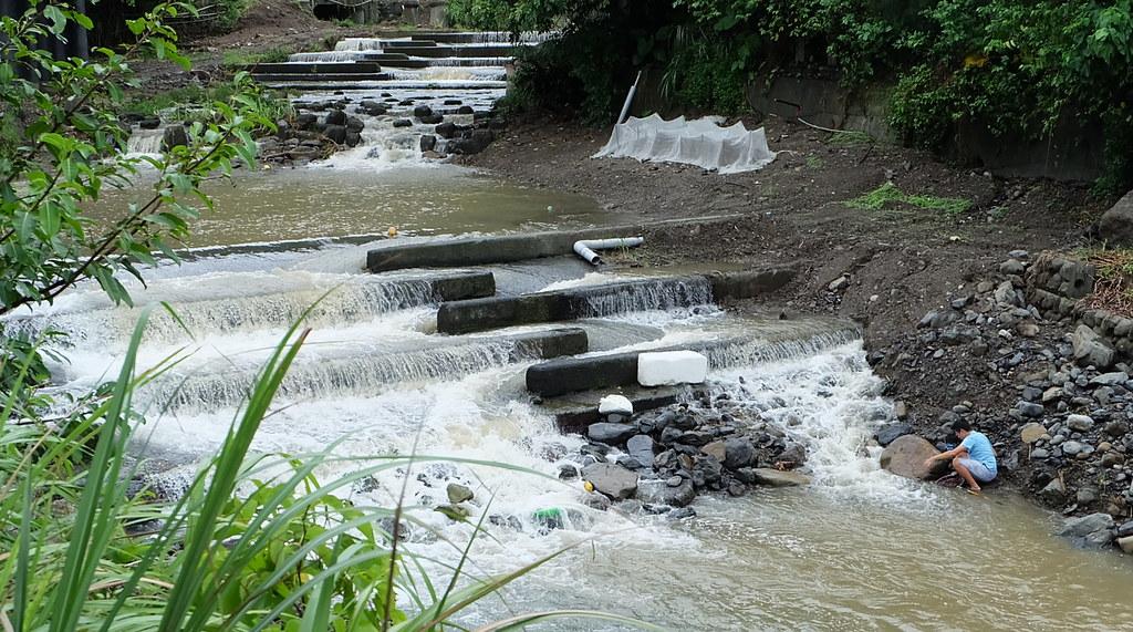 生态与工程如何和谐共处?台湾环境专家给出答案