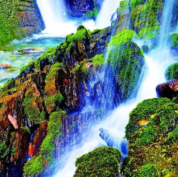 阴条岭:神秘古朴的自然保护地