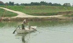 <b>反电鱼志愿者协助清理沱江地笼网,却热脸贴上冷屁股!</b>