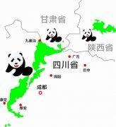 明年完成大熊猫国家公园体制试点 四川成都