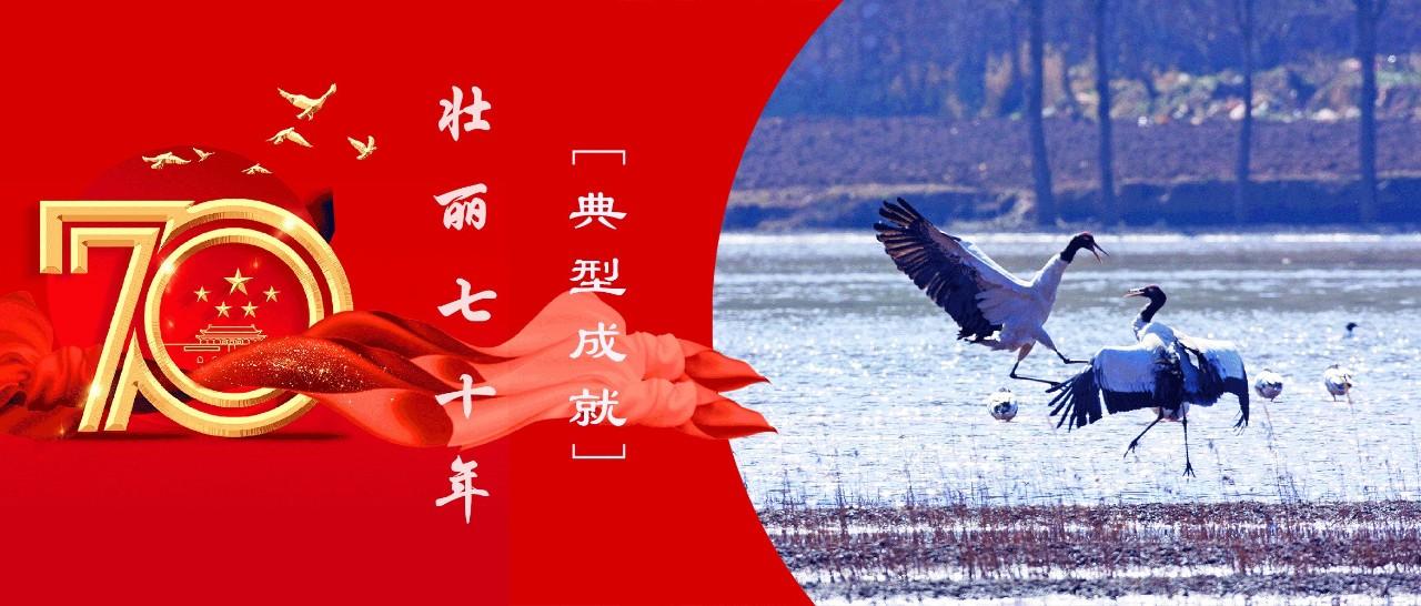 张纪华:守好生物多样性宝库  筑牢西南生态安全屏障