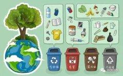 为什么上海垃圾分类成效远超预期?