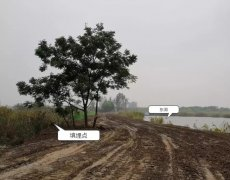 淮北市东湖非正规垃圾堆放点环境污染