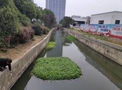 芜湖市弋江区开展黑臭水体整治专项巡