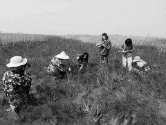 认知陆海河相互作用支持黄河三角洲湿地保护