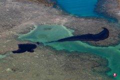 巴西东北油污危机扩大 希腊油轮被指元凶