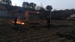 丹东市生态环境局与公安局联合开展秸