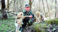 杨敬元:二十余载潜心保护研究金丝猴