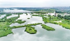 石家庄滹沱河生态修复一期工程完工