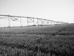 农业灌溉40年――用水少了 产粮多了