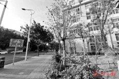 个个精雕细琢 处处精品景观 福州市五城区拆墙透绿提颜