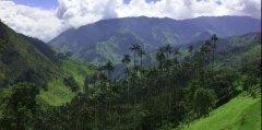 官宣!2020世界环境日花落哥伦比亚