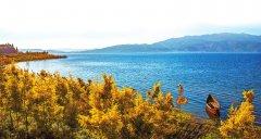 河畅 水清 岸绿 景美――澄江实现城区截污