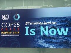 一波三折的COP25:从巴西到智利,紧急落脚西班牙