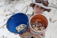 塑料垃圾泛滥偏远离岛 50万只寄居蟹困死其中