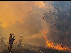 澳洲森林大火失控 圣诞期间消防员仍备
